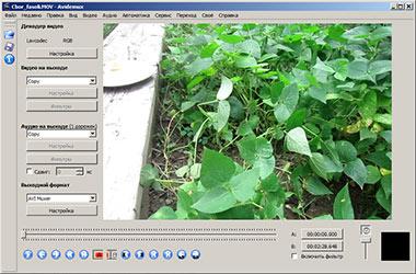 Скриншоты редактора видео Авидемукс
